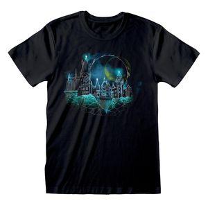 Harry Potter - Wireframe T-Shirt für Herren PG593 (L) (Schwarz)