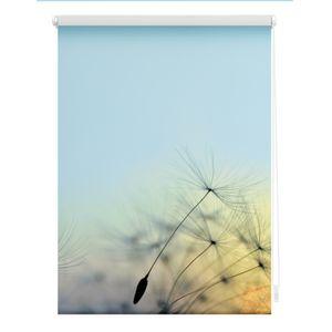 Rollo Klemmfix, ohne Bohren, blickdicht, Pusteblume - Blau 100 x 150 cm (B x L