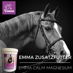 Magnesium Pferd-Ergänzungsfutter plus Vitamin E für starke Nerven + Leistung 1 Kilo ()