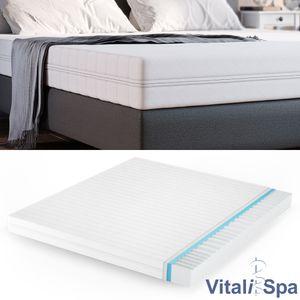 VitaliSpa Calma Comfort Plus Premium Marken Kaltschaum 7 Zonen Schaum Matratze 160x200 H2