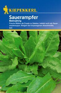 KIEPENKERL® Sauerampfer - Kräutersamen