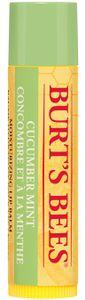 BURT´S BEES Lippenbalsam Cucumber/Mint (Stick) 4,25 g