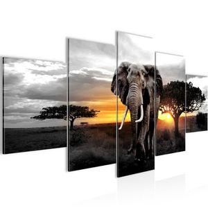 Afrika Elefant BILD :200x100 cm − FOTOGRAFIE AUF VLIES LEINWANDBILD XXL DEKORATION WANDBILDER MODERN KUNSTDRUCK MEHRTEILIG 001251c
