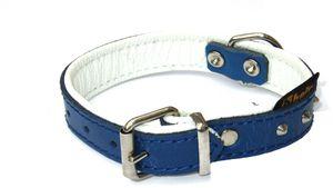 """Heim Halsband """"Texas"""", 18mm breit / 32cm lang, blau-weiß, 6037411"""