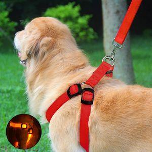 NightyNine Hundegeschirr M(Collo:36-46cm,Torace:47-57cm) - mit 3 LED-Beleuchtungsmodi, verstellbar, inklusive Leine, zum Laufen, Wandern