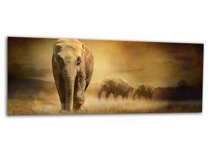EchtGlas Bild AG312500261 Bild AFRIKA ELEFANTEN 125x50cm
