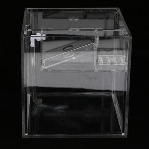 Klein Aquarium für kleine Fische, 22x20x20cm