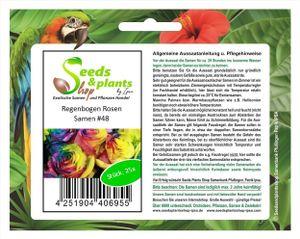 25x Regenbogen Rosen Blumen Pflanzen - Samen #48