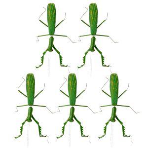 5pcs /Set Pädagogische Kühlschrankmagnete Kinder Insektenmodell Puppen Spielzeug Insekten für Kühlschrank Größe Gottesanbeterin
