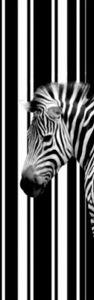 Zebras Fototapete Poster-Tapete - Barcode Zebra, 1-Teilig (250 x 79 cm)