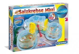 Clementoni Galileo Salzkrebse Maxi