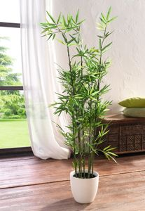 Pflanze 'Bambus' Grünpflanze Blüte Kunst Topf Tisch Deko Raum