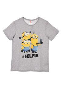 Minion T- Shirt für Damen, Herren und Teenager Größe L grau