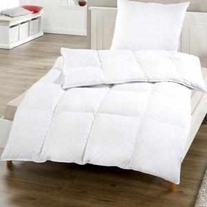 Federn Daunen Kassettenbett Comfort 135 x 200 cm - Bettdecke mit 85% Federn 15% Daunen - Halbdaune Steppdecke mit hautsympathischem Bezug aus 100% Baumwolle - 100