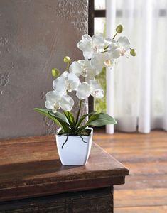 Deko-Orchidee im Topf, elegante Deko, Kunststoffpflanze, natürliche Farbgebung