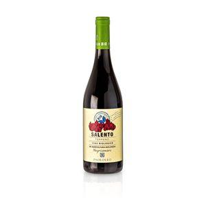 2017 Terreno Negramaro IGT- Paolo Leo, Paket mit:1 Flasche