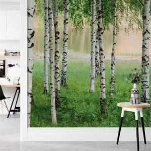 A.S. Création Papier Fototapete Birkenwald  Nordic Forest DD118859  Designwalls