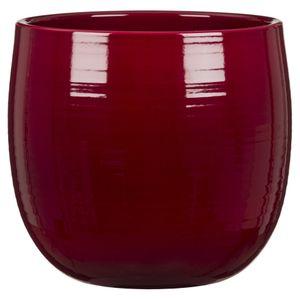 Scheurich Intense, Topfpflanzer, Freistehend, Keramik, Rot, Indoor, Rund