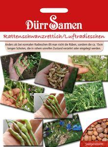 Dürr Samen - Rattenschwanzradies/Luftradischen