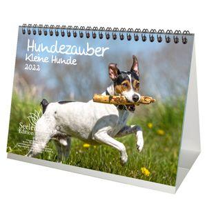Hundezauber Kleine Hunde DIN A5 Tischkalender für 2022 Welpen und kleine Hunde - Seelenzauber