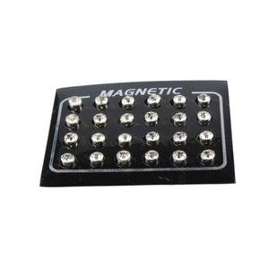 12 Stück Magnetische Ohrringe Kristall nicht piercing Doppelseitige Ohrstecker
