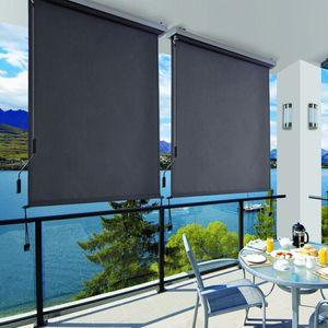 SONGMICS  Senkrechtmarkise 160 x 250 cm Anthrazit  mit Handkurbel aus Polyester wasserfest graue Kassette einfach montiert Vertikalmarkise GSA165GY