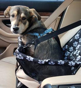 Hunde Autositz für Kleine und Mittlere Hunde Wasserabweisend Faltbar  40x30x40cm 15373