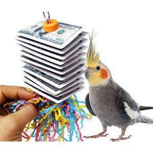 Papagei Biss Spielzeug Spielkarte Zeichnung Vogel Spielzeug
