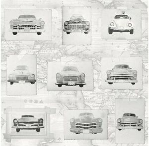 3D Vintage Vinyltapete Oldtimer Cuba Cars Autos Grau