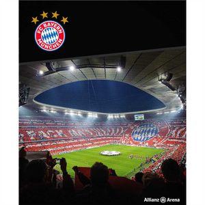 FC Bayern München Teppich Allianz Arena 100x120