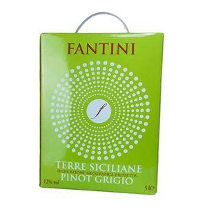 Weißwein Italien Pinot Grigio Fantini Bag in Box trocken (1x5L)