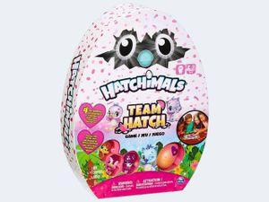 Spin Master Hatchimals Team Hatch Game