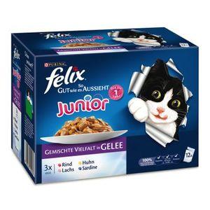 Felix So gut wie es aussieht Junior 12x100g