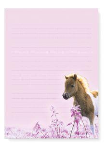 Friendly Fox Kinder Briefpapier Pferde - Pony Briefblock/Schreibblock mit Linien - A5 Briefblock 50 Blatt + 20 Umschläge - Briefpapier Set für Pferde Mädchen