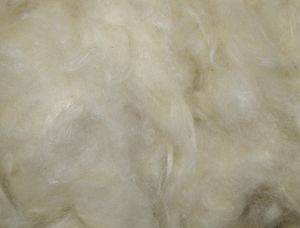 Nobby Kapokwolle 50 g, 81104