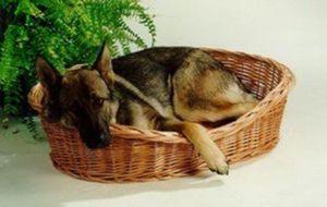 Ruhekorb für kleine Hunde und Katzen - Weidenkorb mit Kissen - Hundekorb Tierkorb Katzenkorb, Größe:Gr.5 107 x 74 x 30 cm