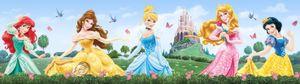 Disney Prinzessin Bordüre Tapeten-Borte Selbstklebend - Merida, Belle, Cinderella, Aurora, Snow-white (14 x 500 cm)