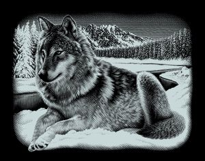 "Scraper Silber groß ""Querformat"" - Wolf"
