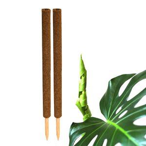2x Kokos Pflanzstab 80cm Rankstab Kokosfaserstab Kokosstab verlängerbar