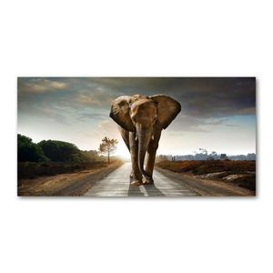 Tulup® Leinwandbild - 120x60 cm - Wandkunst - Drucke auf Leinwand - Leinwanddruck - Tiere - Braun - Elefant