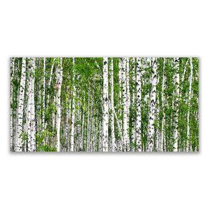Tulup Leinwand-Bilder 140x70 Wandbild Canvas Kunstdruck Birken Wald Bäume Natur