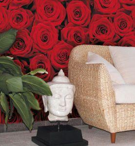 """Komar Fototapete """"Roses"""" 194 x 270 cm, rot, Rosen, Blumen, 4-077"""