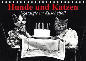 Calvendo Wandkalender Hunde und Katzen - Nostalgie im Kuschelfell (Tischkalender 2021 DIN A5 quer) 2021 DIN A5