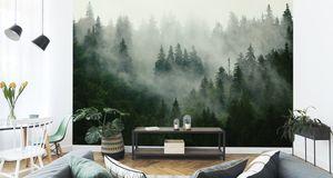 Fototapete Vlies Tapete Wald im Nebel 450 cm (B) x 300 cm (H) Wandbild Wanddeko