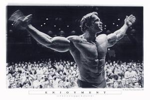 Arnold Schwarzenegger Poster Enjoyment 61 x 91,5 cm