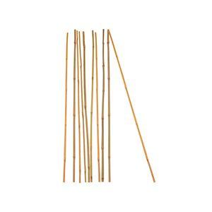 10x Pflanzstab Bambusstab 105 cm x 8 - 10 mm Bambus Rankhilfe Pflanzstab Tonkinstab 100% Naturproduk