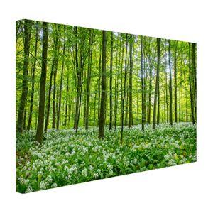 Leinwand Bilder - 30x20 cm - Grüne Bäume im Wald  - Modernes Wandbilder - Natur