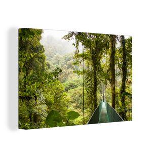 Leinwandbild - Monteverde - Wald - Brücke - Regenwald - 120x80 cm - Foto auf Leinwand - Gemälde auf Holzrahmen
