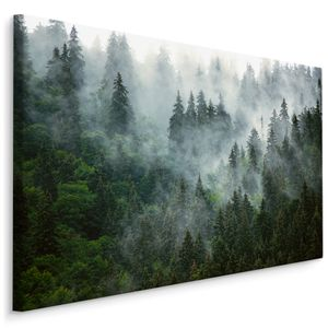 Fabelhafte Canvas LEINWAND BILDER 120x80 cm XXL Kunstdruck Wald Nebel Bäume Nadelwald