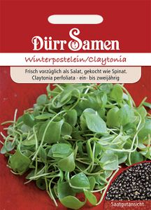 Dürr Samen - Winterpostelein